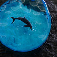 ハンドウイルカ(dolphin425)