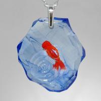 オランダシシガシラ(goldfish043)