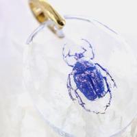 オオケバネカナブン(beetle010)