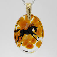 黒馬(horse020)