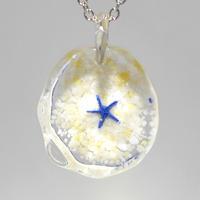 アオヒトデ(starfish005)