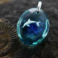 ハンドウイルカ(dolphin433)