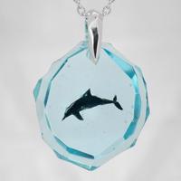 ハンドウイルカ(dolphin410)