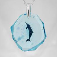 ハンドウイルカ(dolphin412)