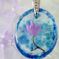 シモクレン(magnolia016)