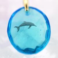 ハンドウイルカ(dolphin434)