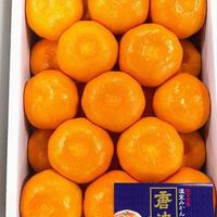 佐賀県産 温室みかん 唐津(2kg/25個入) 税込