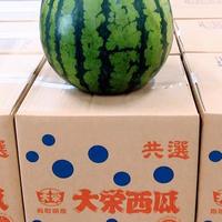 鳥取県産「大栄西瓜」 税込