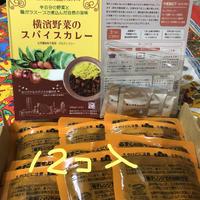 [環境に配慮したゴミ減量商品] 横濱野菜のスパイスカレー200g 12個 ご自宅用