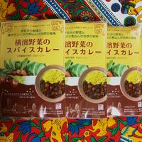 [マサラモア]横濱野菜のスパイスカレー 400g 3個入り