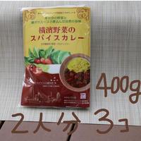 [マサラモア]横濱野菜のスパイスカレー400g  3個入り