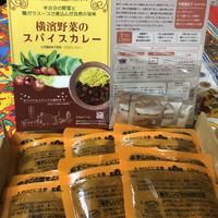 [環境に配慮したゴミ減量商品] 横濱野菜のスパイスカレー200g 12個 ご自宅用  (1人分200g1個プレゼント)