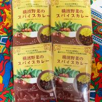 [マサラモア]  横濱野菜のスパイスカレー 400g 2個、 200g 2個入り