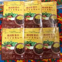[マサラモア] 横濱野菜のスパイスカレー 200g 6個入り