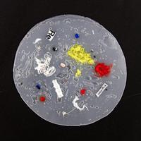 Recycle Coaster  / リサイクルコースター