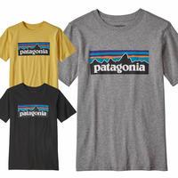 (パタゴニア)Patagonia Boys P-6 Logo Organic T-shirt