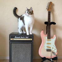 またたびロックンロール ギターアンプ(爪とぎ)