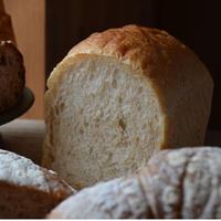 matoiの食パン2斤セット