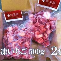 冷凍いちご500g 2個セット