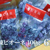 冷凍果物ピオーネ100g   6個セット