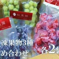 冷凍果物3種 6個セット