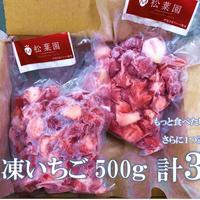 冷凍いちご500g 3個セット