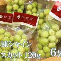 冷凍果物シャインマスカット120g   6個セット