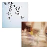 55cm角:【MCB551705】BUN YOKOYAMA「JAPAN」(メガネ拭き・めがね拭き)