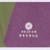 正絹鮫小紋紫/緑色小風呂敷