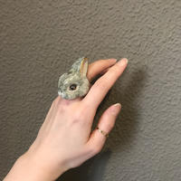 capi gray rabbit ring