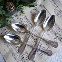 Apollo Rubans Spoon