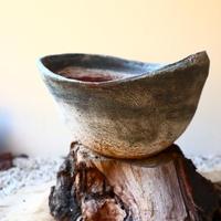 安西桂 〝土の子″ 鉢   no.111821