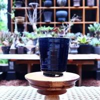 Tadao  Akutsu 〝瑠璃油″ / humanity pot       no.583