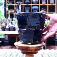 Tadao  Akutsu 〝瑠璃油″ / humanity pot       no.582
