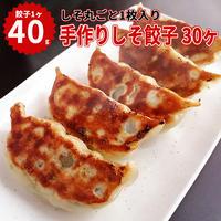 湘南麻生製麺 手作りしそ餃子 40g×30ヶ入