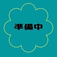 michiyo『Gilda』◆サイズS&M用◆キット