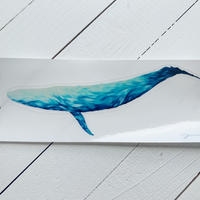 再入荷!Blue whale sticker