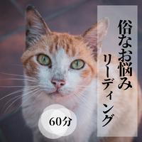俗なお悩みリーディング(60分)