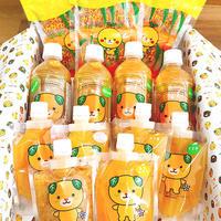 【期間限定】柑橘スイーツ詰め合わせBOX  ※訳あり