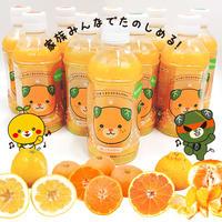 果汁100%ジュース(あらしぼり)5品種10本セット