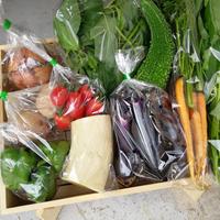 季節の野菜セット(Mサイズ/2~3人分)