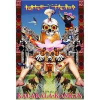 TURTLE ISLAND - 空空神々 KALAKALA KANKAN (CD) [2013]