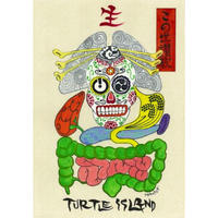 TURTLE ISLAND - この世讃歌(CD+DVD) [2012]