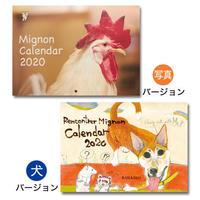 《1冊でのご注文》2020 保護犬猫【A4壁掛け】写真/イラストカレンダー