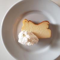 ベイクドチーズケーキと水出し珈琲セット【7月上旬~7月中旬発送】