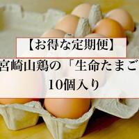 【お得な定期便】生命たまご10個