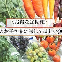 【お得な定期便】POCO A POCO FARMの野菜ボックス
