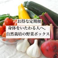 【お得な定期便】自然ファームハレトケの野菜ボックス