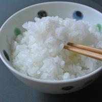 【2020年度・新米】まとめ買いの方(白米)身体に負担がすくないお米。化学肥料不使用ササニシキ 10kg