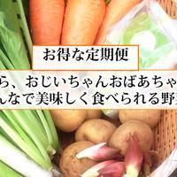【お得な定期便】もうり農園の野菜ボックス